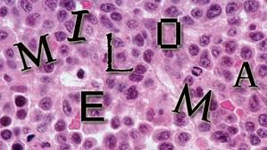 Vivir con el mieloma: Pronóstico y calidad de vida. Dr. Fernández deLarrea.